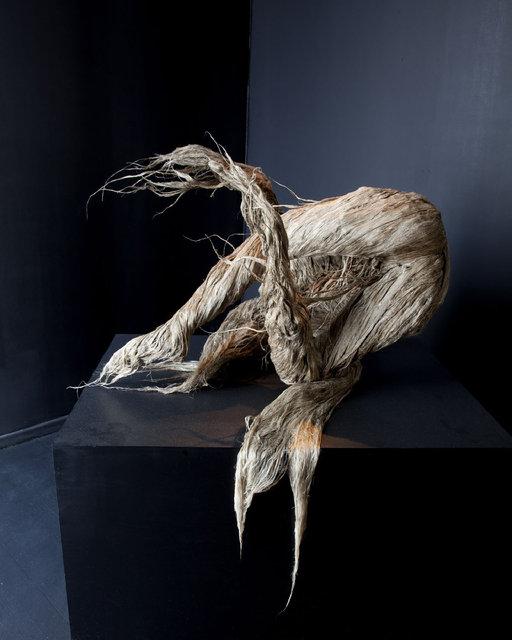 Chang Yushin U, Endovegealis Humanoide, A2Z Gallery