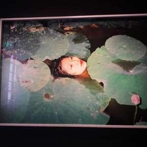 Corps, nature et animaux : l'exposition du photographe chinois Ren Hang àParis
